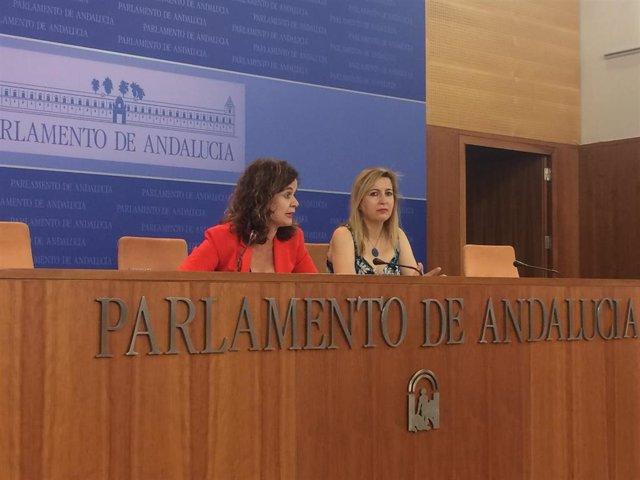 Imagen de archivo de Esperanza Gómez y Carmen Lizárraga como portavoces adjuntas de Podemos Andalucía, que ahora serán las cabezas de lista al Congreso de Más País por Sevilla y Málaga .