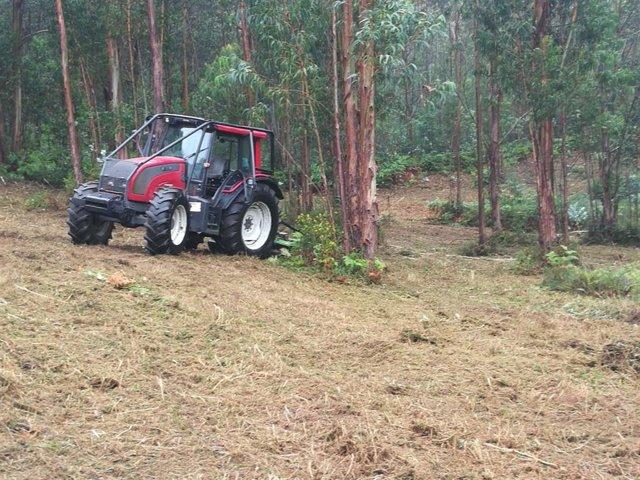 Trabajos de limpieza forestal en Galicia