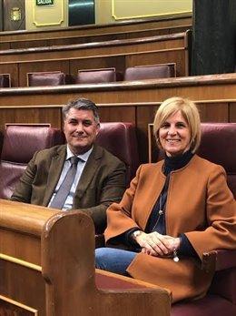 Ignacio Romaní con García Pelayo en el Congreso en una imagen de archivo