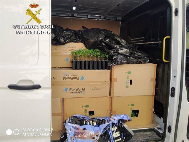 Plantas de marihuana interceptadas en una furgoneta por la A-92