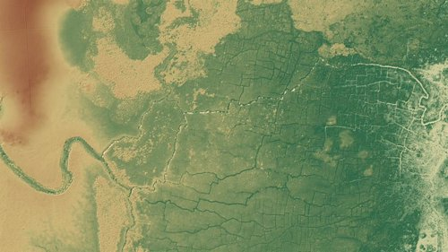 Imagen lidar de la selva en Belice, con restos de campos agrícolas mayas