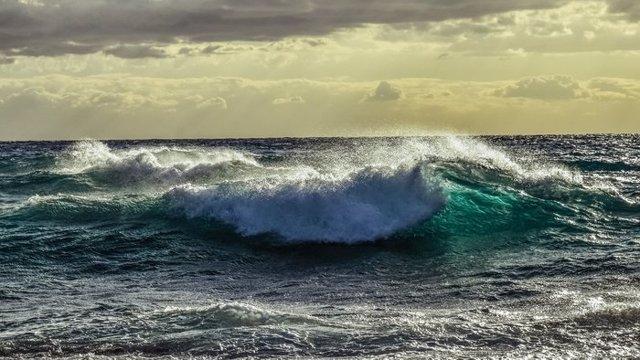 Los océanos absorben más carbono de origen humano, un tercio del total
