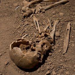 ADN revela detalles sobre la misteriosa Cultura del Hacha de Guerra