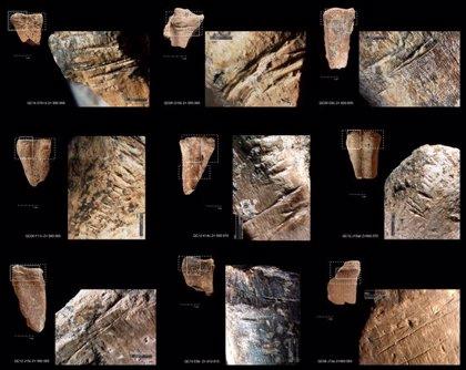Una recerca on ha participat la UdL determina que els humans ja emmagatzemaven menjar fa 400.000 anys