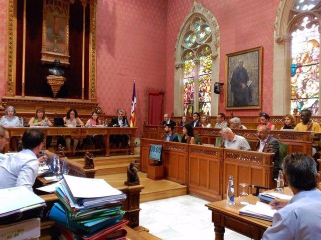 Imagen del pleno ordinario del Consell de Mallorca.
