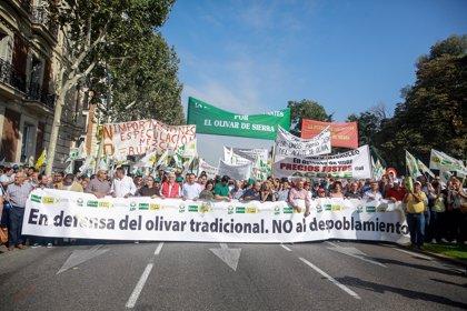 """Los olivareros reclaman en Madrid mecanismos para paliar la """"crisis tremenda"""" del sector"""