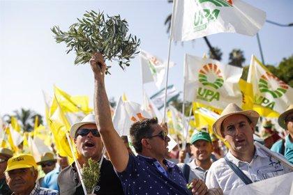 """Estados Unidos.- (AMP) Los olivareros reclaman en Madrid mecanismos para paliar la """"crisis tremenda"""" del sector"""