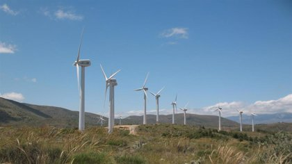 El sector eólico pide estabilidad regulatoria y visibilidad retributiva a medio plazo