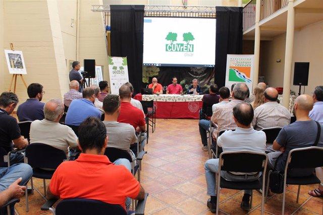 Córdoba.- Un proyecto innovador expone los beneficios de las cubiertas vegetales