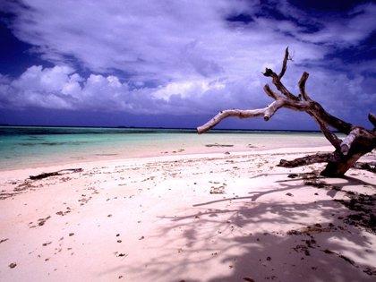 I.Marshall.- Islas Marshall declara la crisis climática nacional y alerta de la inacción de la comunidad internacional