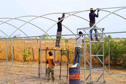 Fundación Fluidra convertirá una finca de Karang (Senegal) en una explotación agrícola rentable