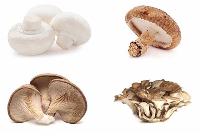 Un nuevo estudio sugiere un posible vínculo entre la inclusión de hongos, champiñones y setas en la dieta y un menor riesgo de cáncer de próstata.