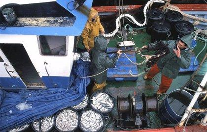 El sector pesquero interpone un recurso ante Trabajo por la obligatoriedad de 'fichar' a bordo de los barcos