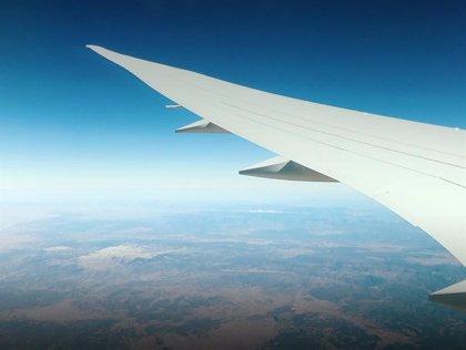 Un avión choca contra un ave en Ibiza y provoca que tres vuelos aborten su aterrizaje