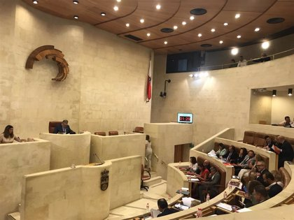 Todos los grupos del Parlamento piden al Gobierno central la mejora de la Red de Cercanías