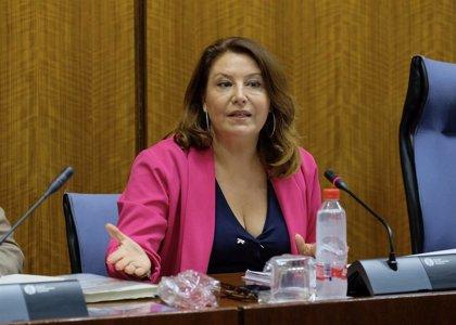 """Carmen Crespo destaca en el Parlamento que """"el 70% del gasto en el presupuesto de 2020 se destinará a inversión"""""""