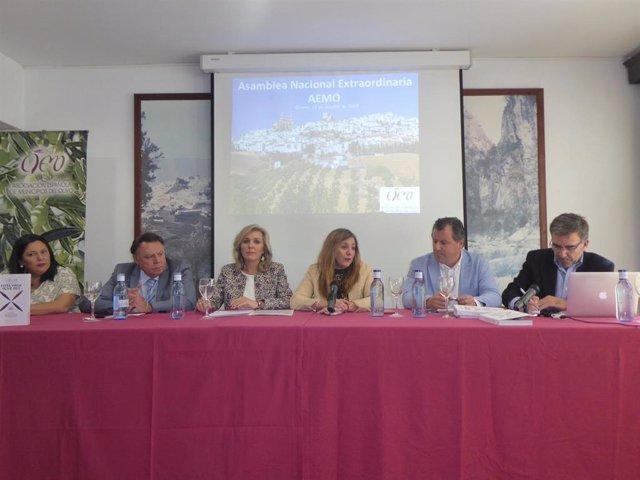 Irene García en la Asociación Española de Municipios del Olivo (AEMO)