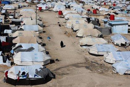 Unos 9.500 niños extranjeros están atrapados en tres campos de desplazados del noreste de Siria