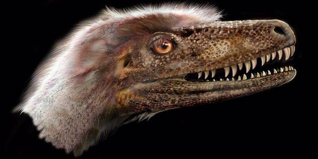 Un completo fósil aclara teorías sobre la evolución de los 'raptores'