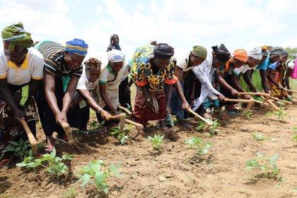 El difícil equilibrio entre la respuesta de emergencia y fomentar la resiliencia en Burkina Faso