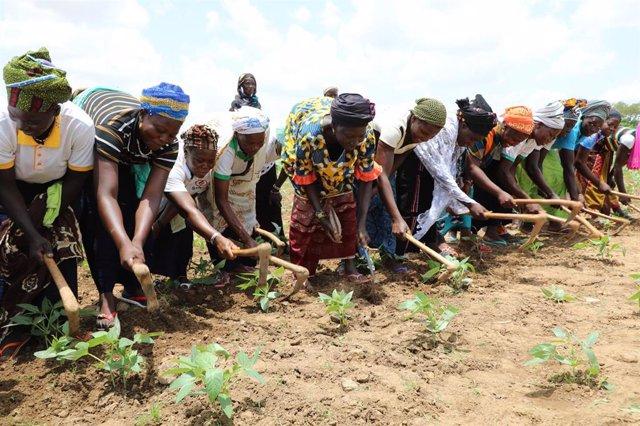 Mujeres agricultoras en Burkina Faso