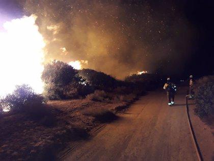 Desalojan a 40 personas por un incendio forestal en Manilva (Málaga)