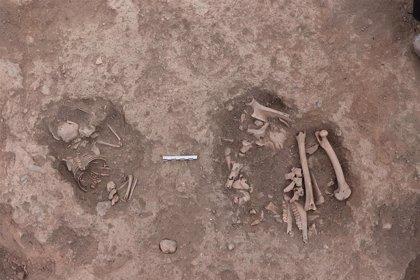 Hallados en Armuña (Segovia) restos de un 'bebé' de 2.200 años