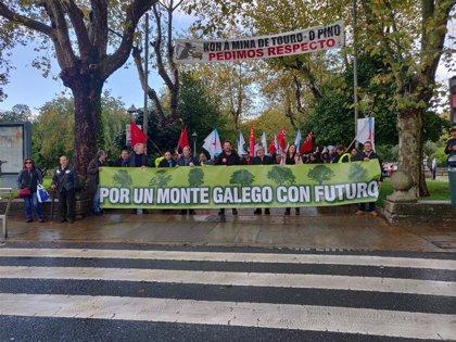 """Centos de persoas maniféstanse en defensa de """"a rendibilidade e sustentabilidade social"""" do monte galego"""