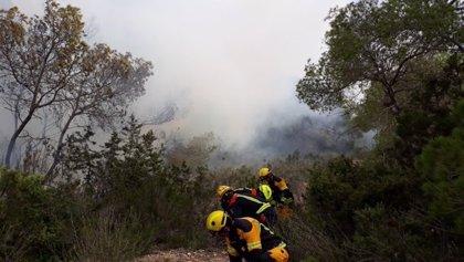 Estabilizado el incendio forestal en la zona de s'Estufador en Formentera