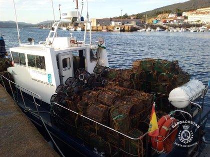 Incautadas más de 12.000 nasas irregulares en tres meses en la costa gallega