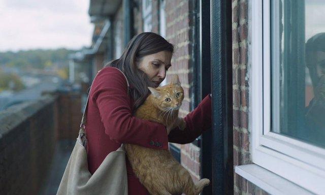Imagen de 'Un gato en la pared'