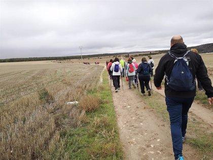 Más de un centenar de personas completan la quinta etapa del Camino de San Frutos (Segovia)
