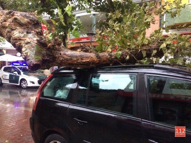 La rama de un árbol cae sobre un coche y hiere a una mujer en Cabezón de la Sal