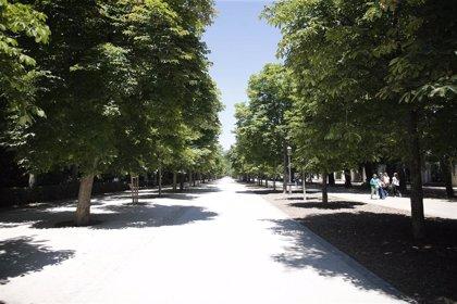 El bosque metropolitano de Madrid 360 se conformará en 12 años en el borde exterior de los desarrollos del sureste