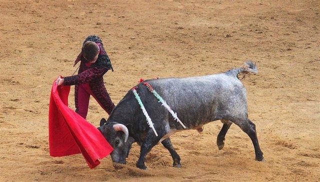 Espectáculo taurino en la provincia de Cádiz