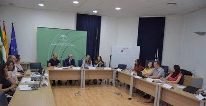 La Junta reúne a los socios del programa europeo Powerty sobre el acceso a energía renovable de colectivos vulnerables