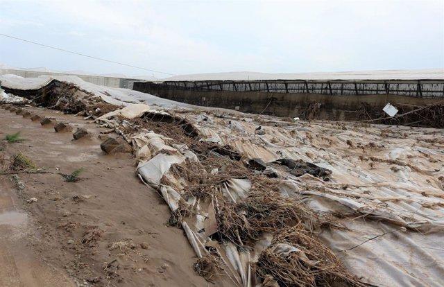 Destrozos causados por el temporal en Almería