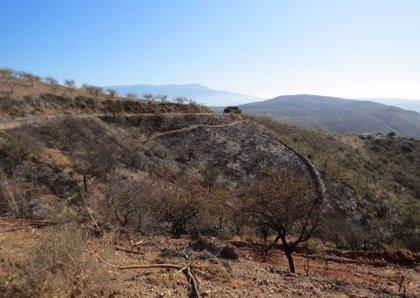 El presunto autor del incendio forestal en Turón (Granada), ya ante el juez, realizaba tareas de fontanería
