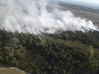 La redacción de planes de defensa en zonas de alto riesgo de incendios forestales en Aragón contará con 633.268 euros