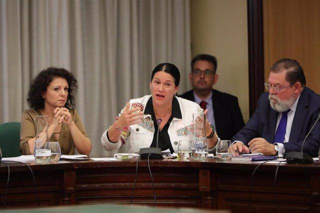 (I-D) Los concejales del PP en el ayuntamiento de Móstoles, Mercedes Parrilla; Mirina Cortés y Alberto Rodríguez de Rivera, durante su intervención en la sesión extraordinario de reprobación a la alcaldesa de la localidad, Noelia Posse.