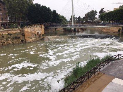 CHS toma muestras de agua en el río Segura ante la aparición de espuma bajo la pasarela Manterola en Murcia