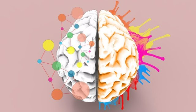 Sinestesia, cerebro con colores.