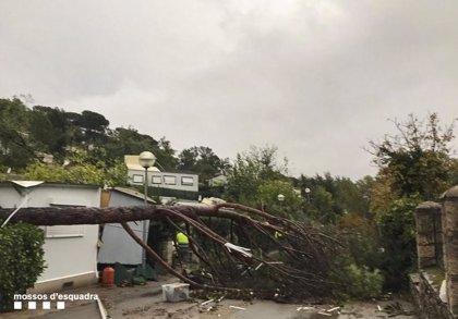 Tres heridos, entre ellos una niña de 7 años, en un camping de Gualba (Barcelona) por el temporal