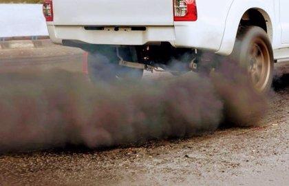 Los vehículos con los que trabajan los Agentes del Medio Natural tienen una media de 14 años