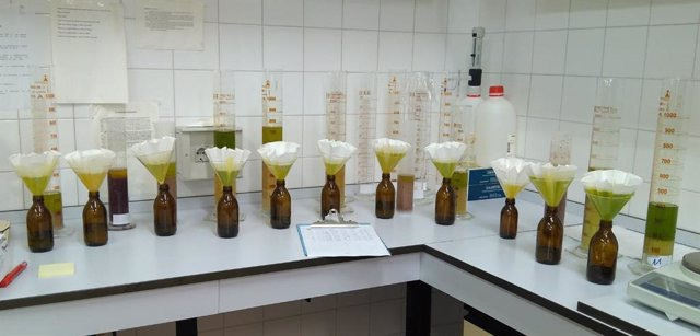 Obtención de aceite para su posterior análisis.