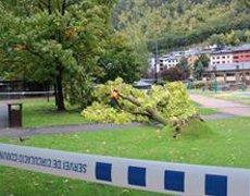 """El temporal causa """"petits"""" desperfectes a Andorra (EUROPA PRESS)"""