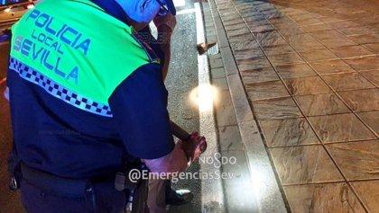 Policía clausura un local en Cartuja sin licencia con venta masiva de entradas para una fiesta de Halloween