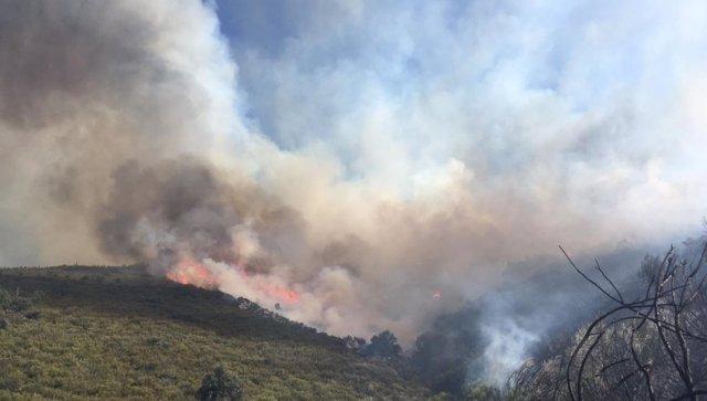 Incendio en Quilós (Cacabelos).