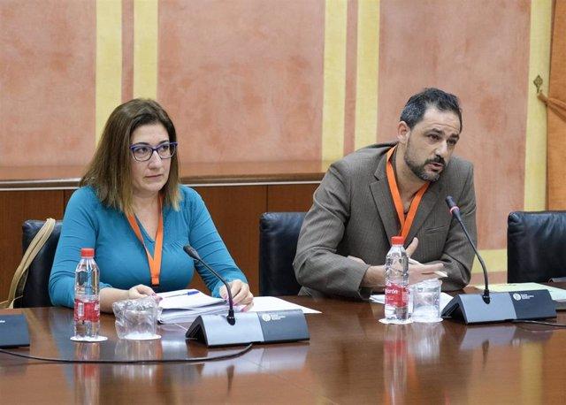 Comparecencia de los representantes de Facua este lunes en el Parlamento de Andalucía sobre el Presupuesto de la Junta de 2020.