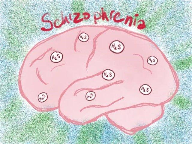 Los niveles de MPST y sulfuro de hidrógeno son altos en la esquizofrenia.